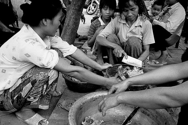 http://www.raffaelecapasso.com/files/gimgs/th-10_vietnam26.jpg